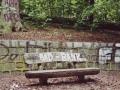 bank-1024x700.jpg