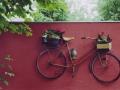 fahrrad1-1024x703.jpg